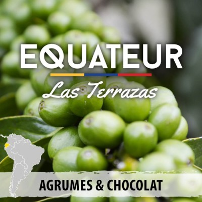 Café en grain Equateur - Las Terrazas - Quito