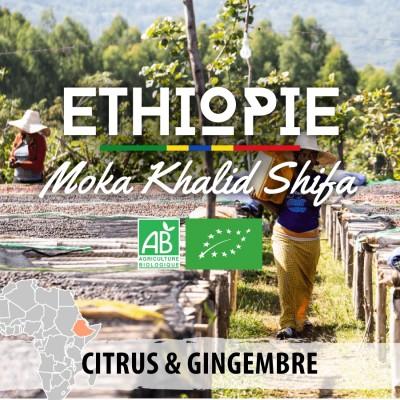 Café en grain BIO Éthiopie - Moka Khalid Shifa