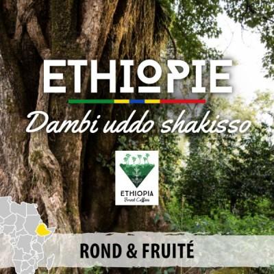 Café en grain ETHIOPIE - Moka Guji - Shakisso Qararo