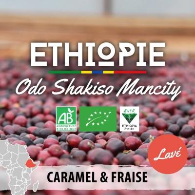Café en grain Éthiopie - Moka Guji Odo Shakiso - version lavée
