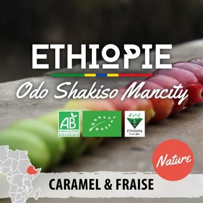 Café en grain Éthiopie - Moka Guji Odo Shakiso - version nature