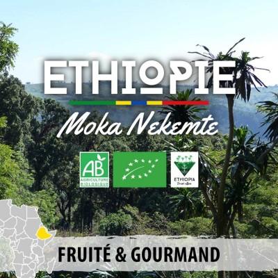 Café en grain BIO Ethiopie - Moka Nekemte Forest Ground
