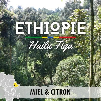 Café en grain ETHIOPIE - Hailu Figa - Yirgacheffe