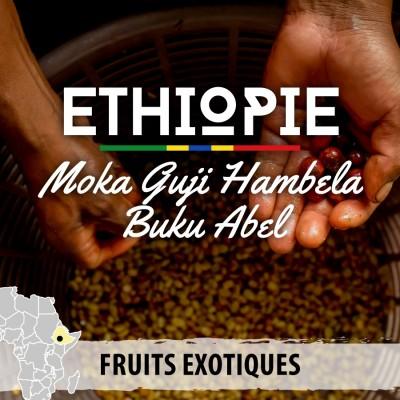 Café en grain Éthiopie - Moka Guji Buku Abel Hambela