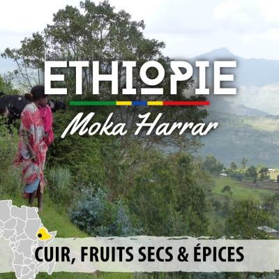 Café en grain ETHIOPIE - Mesela Grade 4 - Moka Harrar