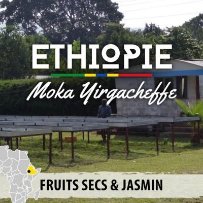 Café en grain ETHIOPIE - Berentu G2 - Moka Yirgacheffe