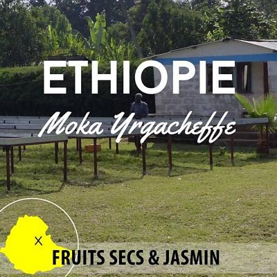Kilo d'ETHIOPIE - Berentu G2 - Moka Yrgacheffe en grain