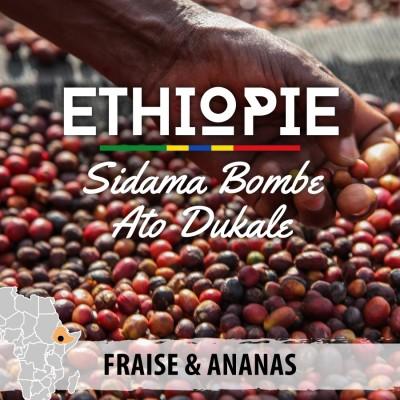 Café en grain Éthiopie - Sidama Bombe