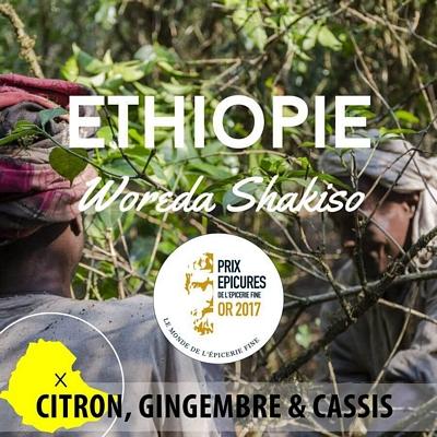 Moka d'Ethiopie en grain - Moka Guji - 1Kg