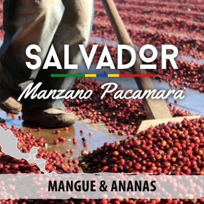 Café en grain Salvador - Manzano Pacamara