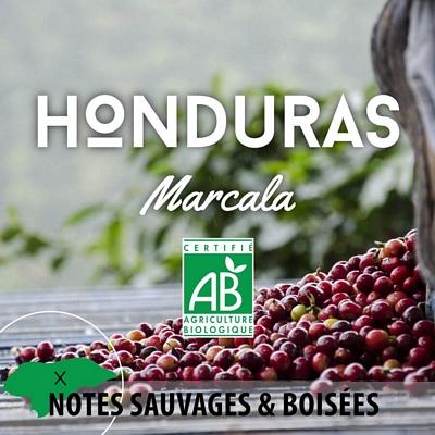 Kilo de HONDURAS - Marcala - Grade SHG Bio en grain