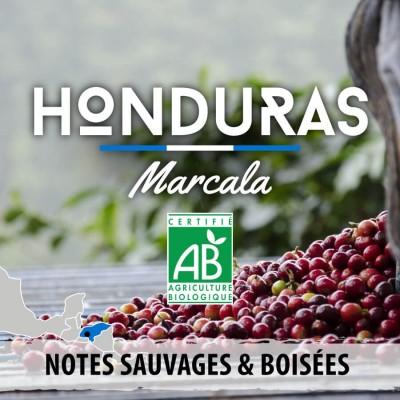 Café en grain BIO: Honduras - Marcala