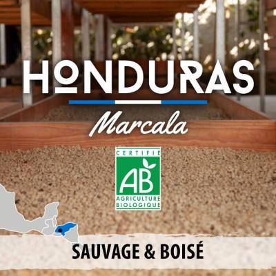 Café en grain BIO - HONDURAS - Marcala - Grade SHG