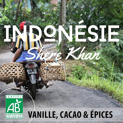 Café en grain BIO INDONESIE - Ile de Sumatra - SHERE KHAN