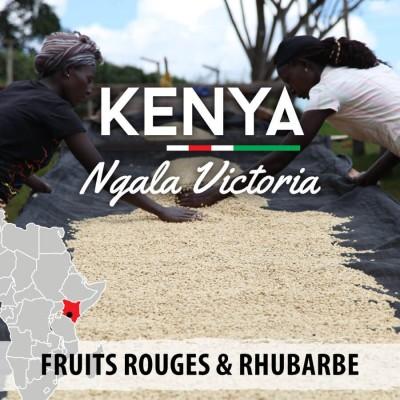 Café en grain KENYA - Ngala Victoria - AB