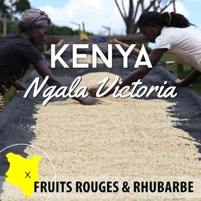 Café KENYA - Ngala Victoria AA - café moulu