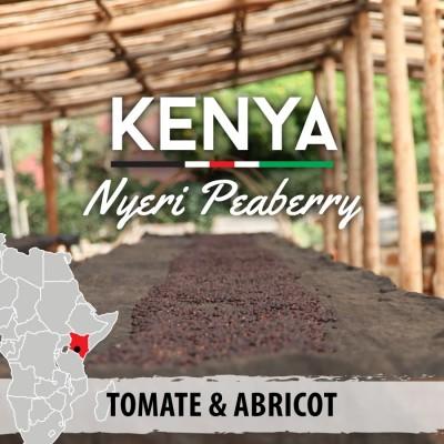 Café en grain Kenya - Nyeri Peaberry