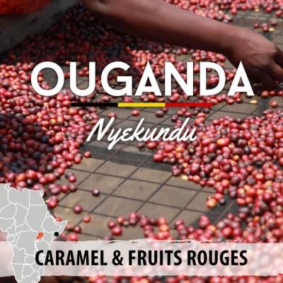 Café en grain Ouganda - Nyekundu - Mont Rwenzori