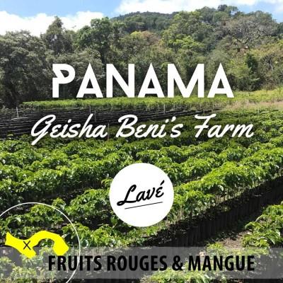 Café en grain PANAMA - Geisha - Beni's Farm - Lavé