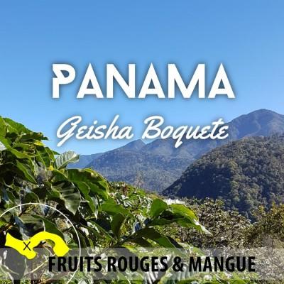 Café en grain Panama Geisha lavé - Boquete Beni's Farm