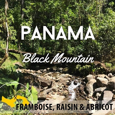 Café en grain Panama - Volcan Baru - Black Mountain