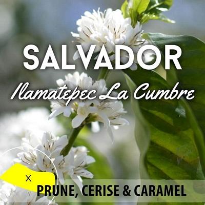 Café en grain SALVADOR Ilamatepec - La Cumbre - Bourbon rouge