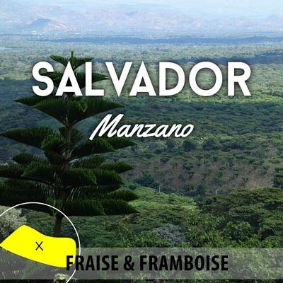 Café en grain SALVADOR - Manzano - Bourbon rouge