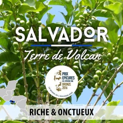 Café grain Salvador: Terre de Volcan - Santa Ana